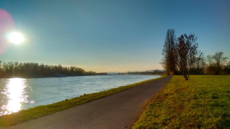 Солнечный день на Рейне