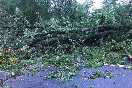 Ураган 01.08.2017